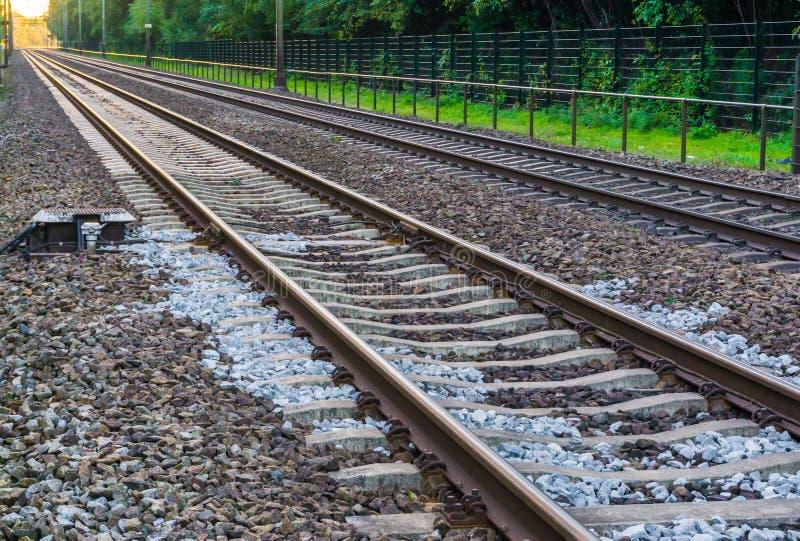 Trilhas de estrada de ferro dobro do trem que desaparecem no fundo do transporte ou do curso do horizonte foto de stock