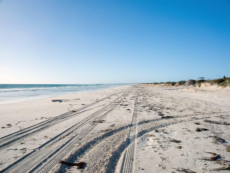 Trilhas do pneu na areia da praia imagem de stock