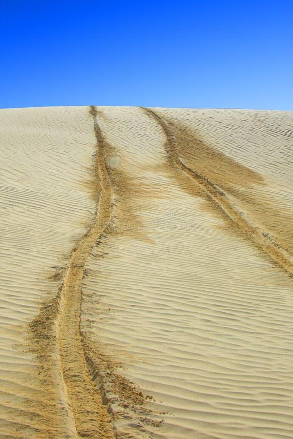 Trilhas do pneumático no deserto imagens de stock