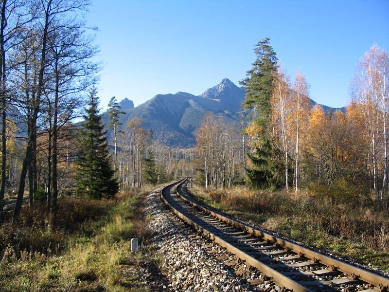 Trilhas do trem fotografia de stock