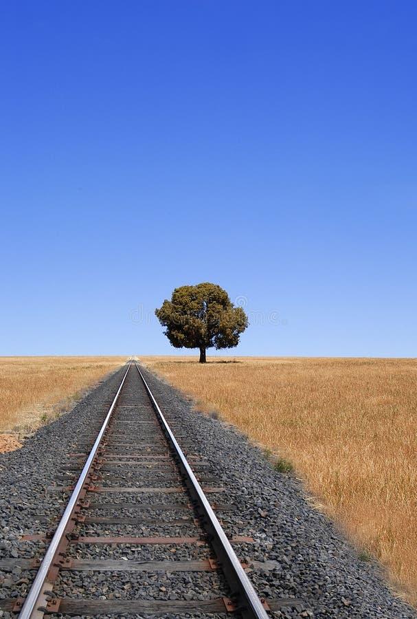 Trilhas e horizonte do trem imagem de stock