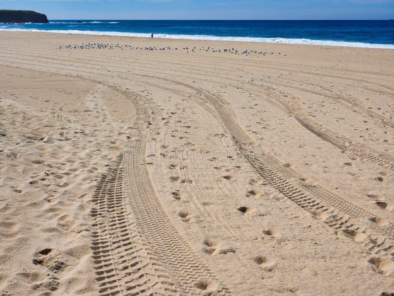 Trilhas frescas e pegadas do pneu na praia amarela da areia imagem de stock royalty free