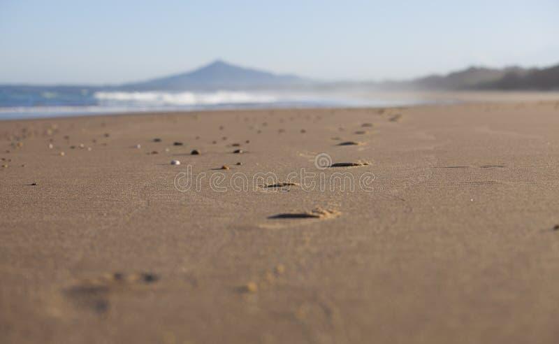 Trilhas no Sandy Beach imagem de stock
