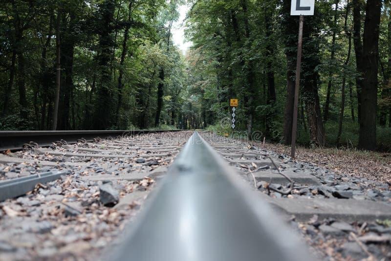 Trilho do trem imagens de stock