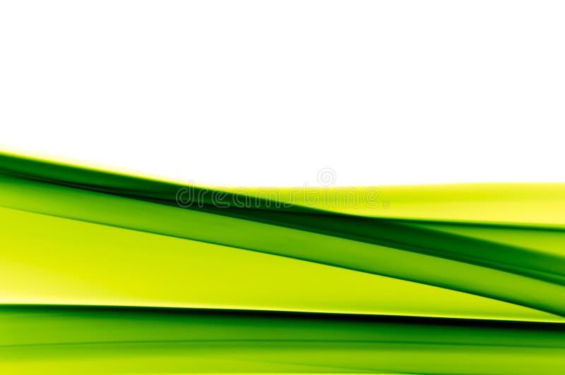 Trillende groene achtergrond op wit royalty-vrije illustratie