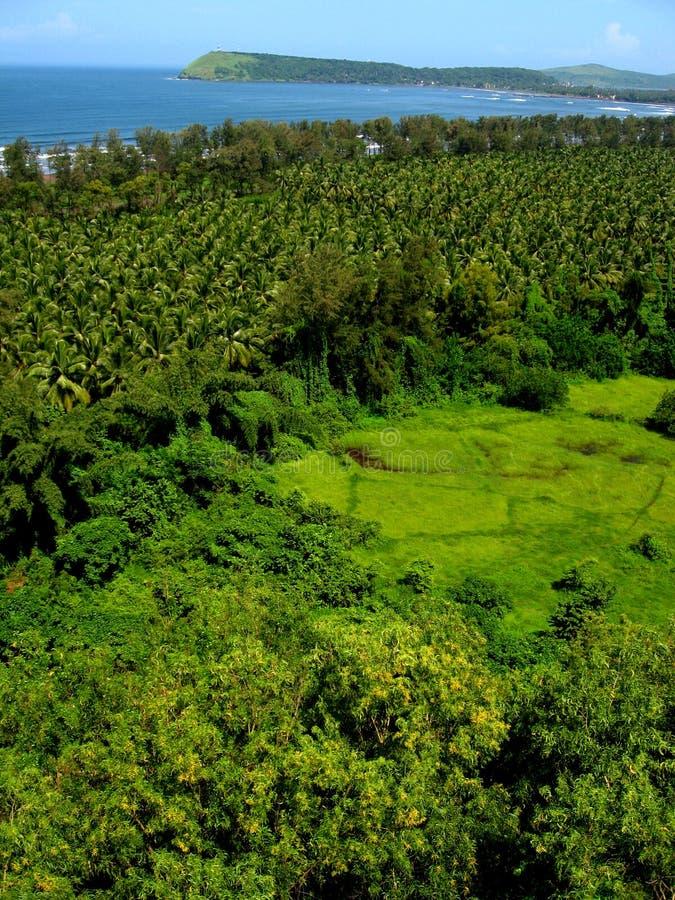 Trillende Ratnagiri landschap-Vi stock fotografie