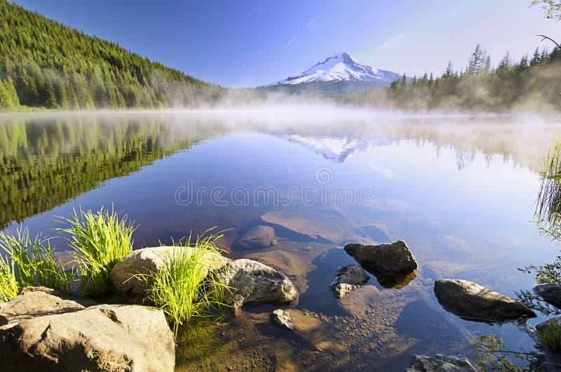 Trillium在日出的湖视图 库存图片