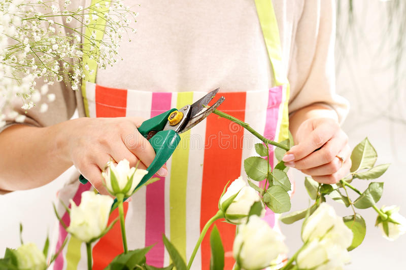 Trim the stems of flowers. Flower containers laid a bouquet of cut flowers royalty free stock photo