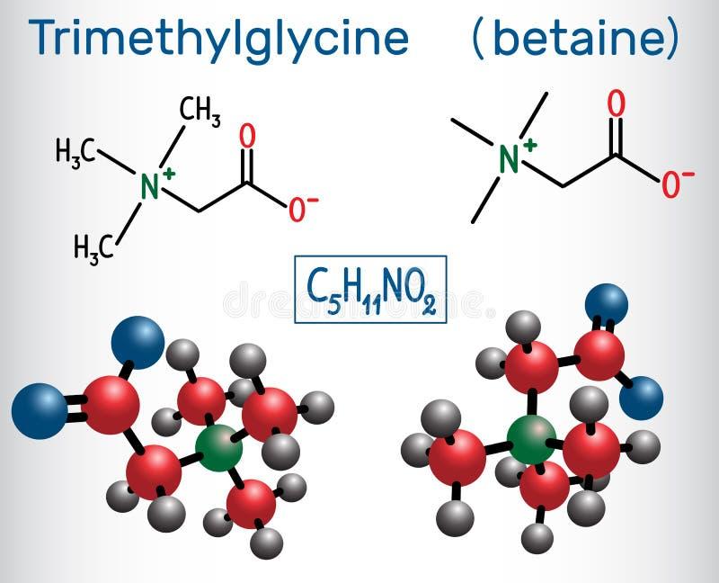 Trimethylglycine TMG, betaine, glycinebetaine, finnas i su stock illustrationer