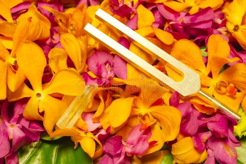 trimma - gaffel- och kristallsten royaltyfria bilder