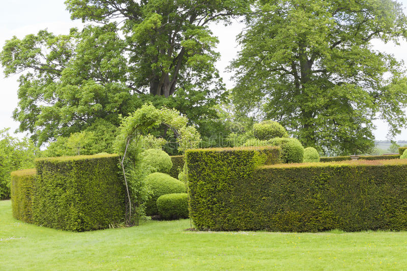 Trimmed hedge wall with archway to topiary inner garden royalty free stock photos