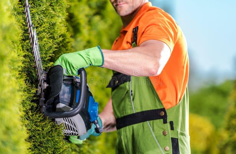 Trimmer φρακτών εργασία κήπων στοκ φωτογραφία