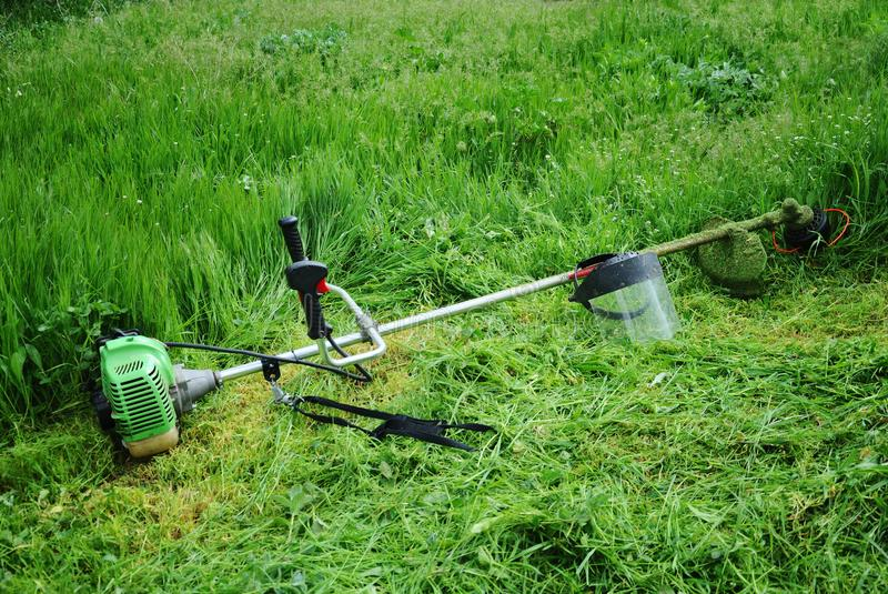 Trimmer for cutting grass. Lies on green beveled grass royalty free stock image