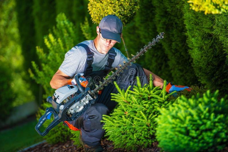 Trimming Work in a Garden royalty free stock photos