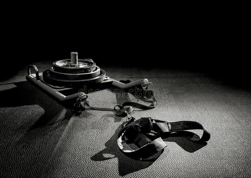 Trineo blanco y negro fotografía de archivo libre de regalías