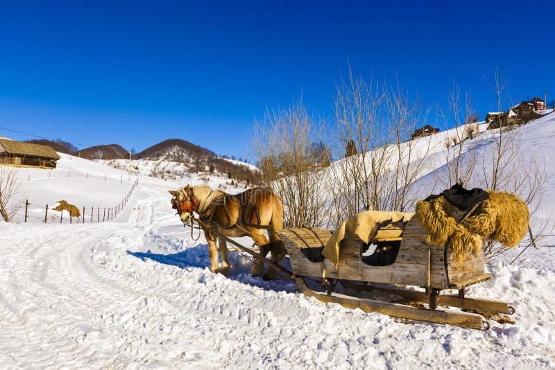 Trineo de madera tirado por el caballo fotografía de archivo libre de regalías
