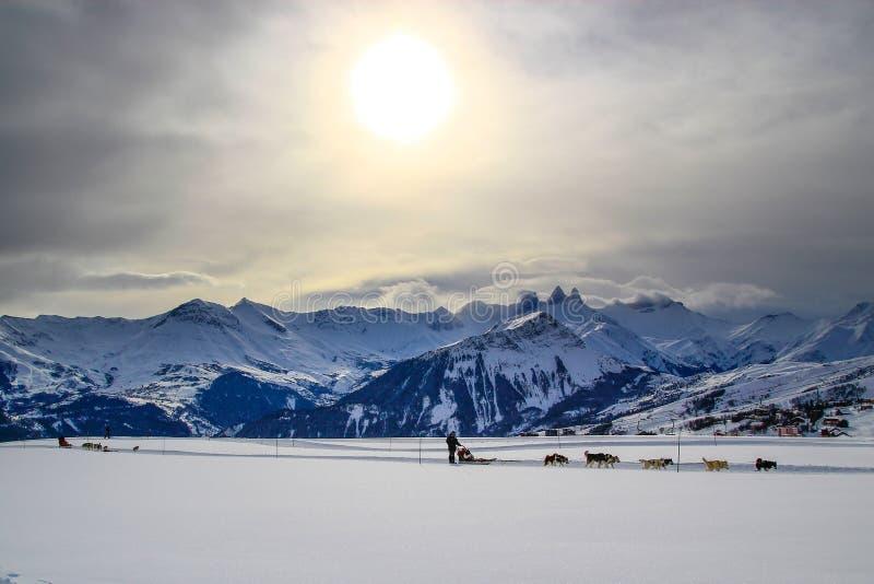 Trineo del perro en las montañas imagen de archivo