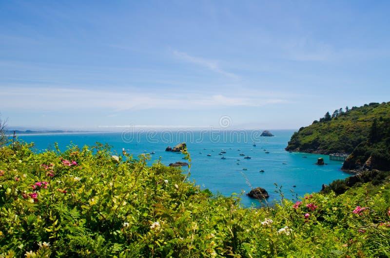 Trinidad Bay royaltyfri fotografi