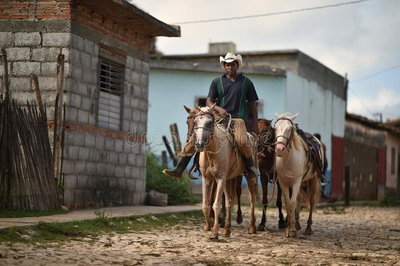 Trinidad, Cuba, 16 Augustus, 2018: Personenvervoerpaard op de straten van Trinidad royalty-vrije stock foto's