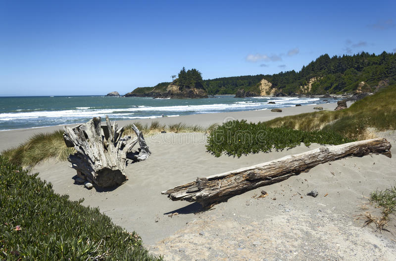 Download Trinidad State Beach In Summer, California, USA Stock Photo - Image: 31897118