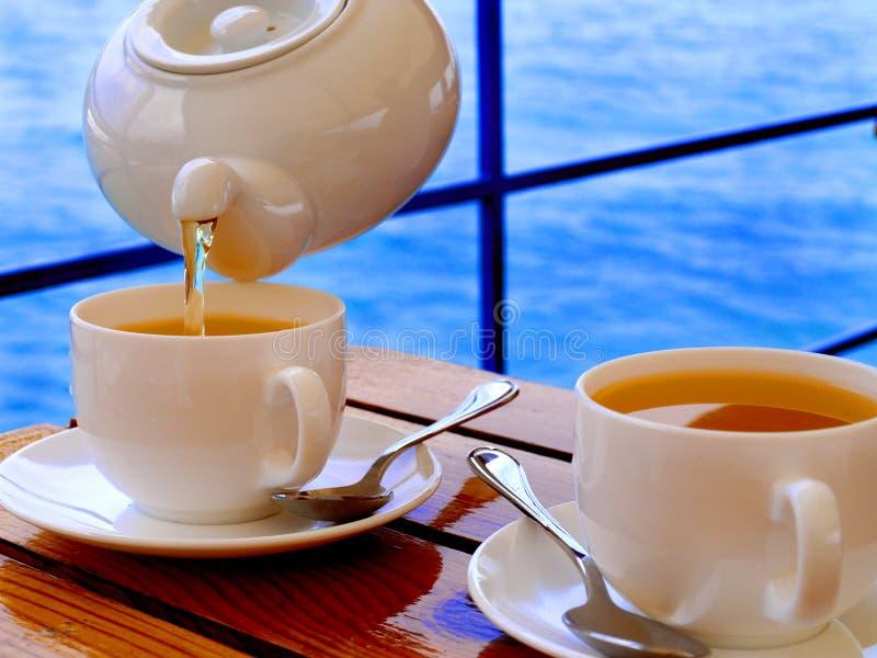 Trinken des Tees stockbild
