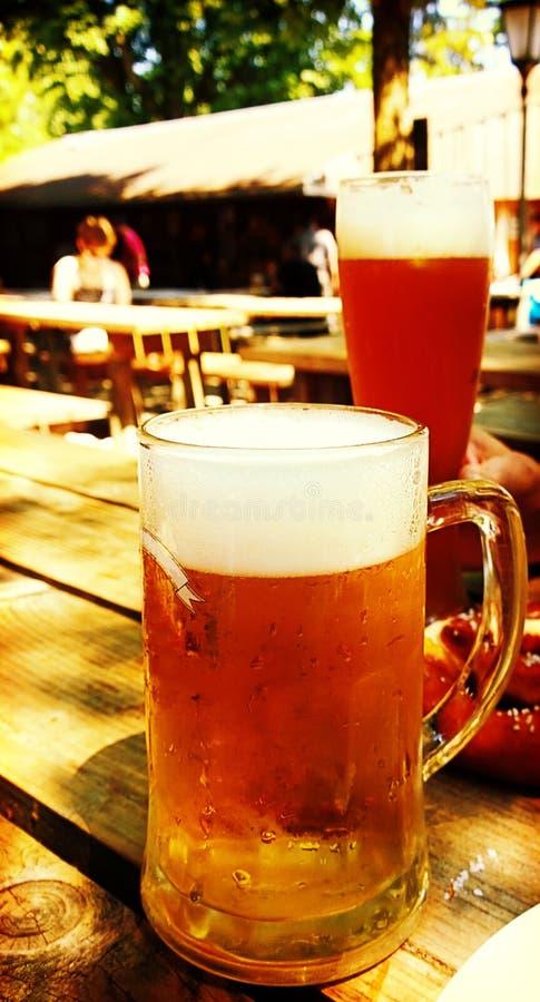 Trinkendes Bier an beergarten lizenzfreie stockfotos
