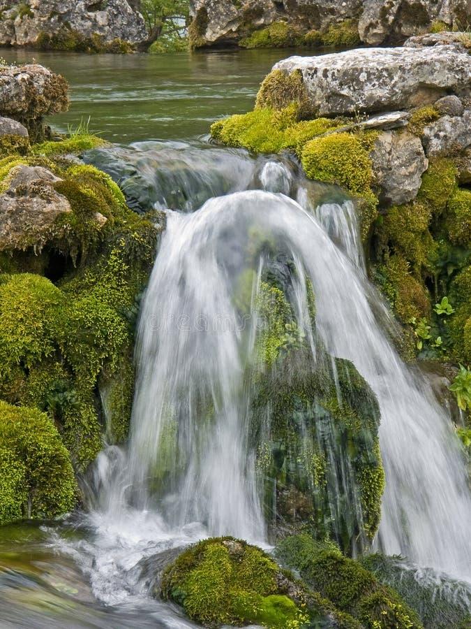 Trinkwasser kurz nach der Quelle lizenzfreie stockfotografie