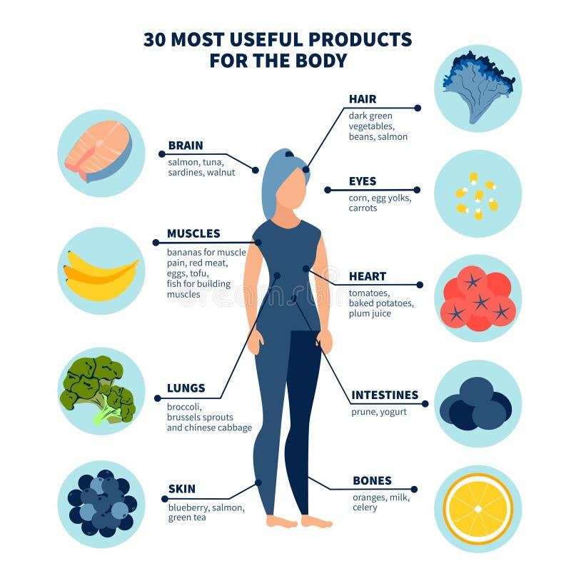 Trinta produtos os mais saudáveis para o corpo No vetor liso dos desenhos animados minimalistas do estilo ilustração do vetor