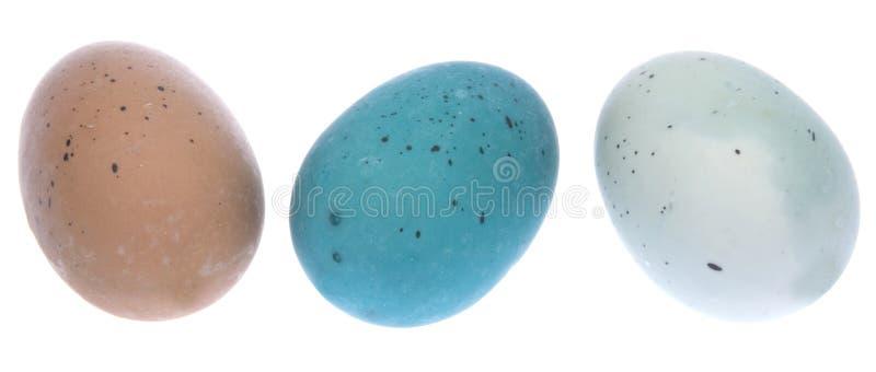 Trio de ovos de Easter imagem de stock royalty free