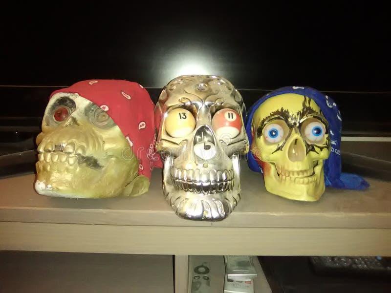 Trio del cranio fotografia stock