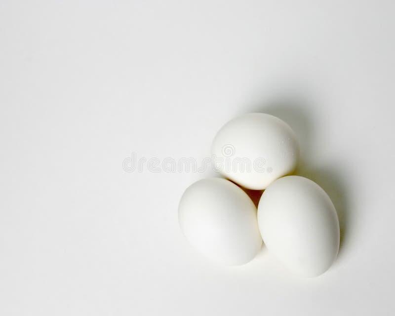 Trio des oeufs sur le blanc image stock