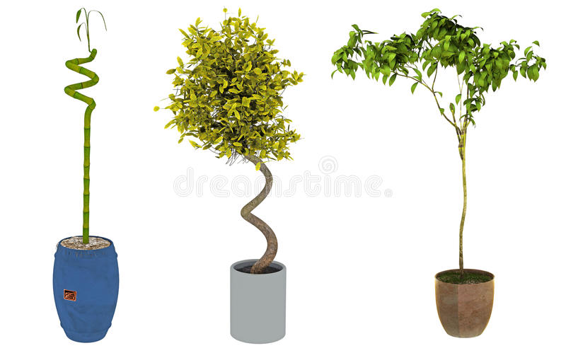 Download Trio of plants stock illustration. Image of natural, pots - 14353322