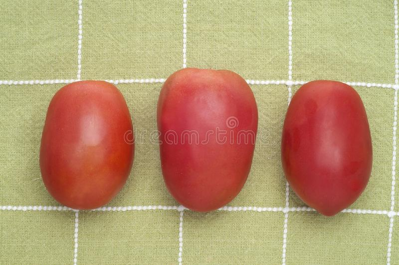 Trio of Roma Tomatoes royalty free stock images