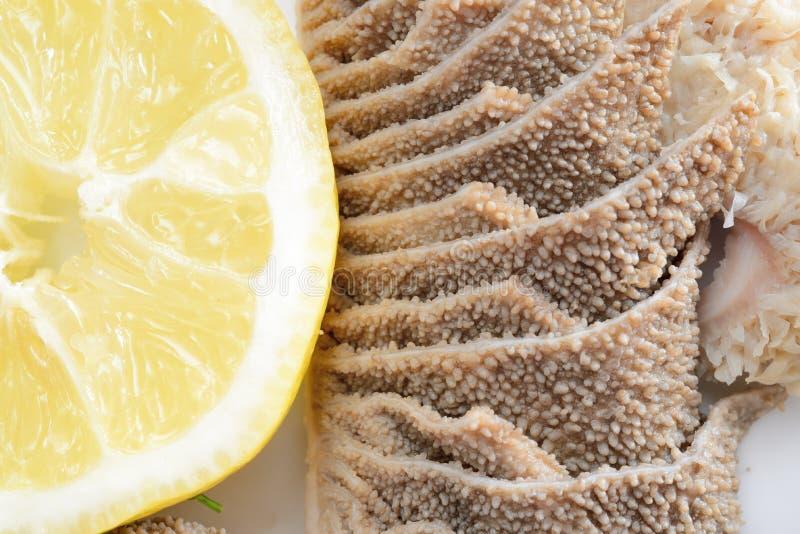 Tripes avec le citron photo libre de droits