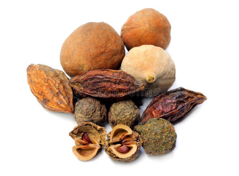 Triphala-ayurvedic fruits. On white background royalty free stock images
