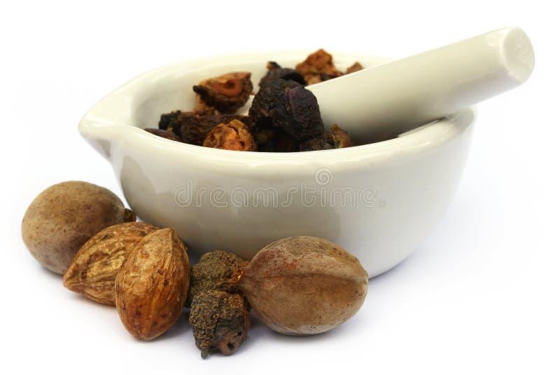 Triphala, uma combinação de frutos ayurvedic com o almofariz e a praga fotografia de stock royalty free
