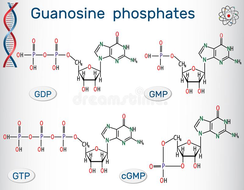 Triphosphate för Guanosinefosfatguanosine, guanosinediphosph stock illustrationer