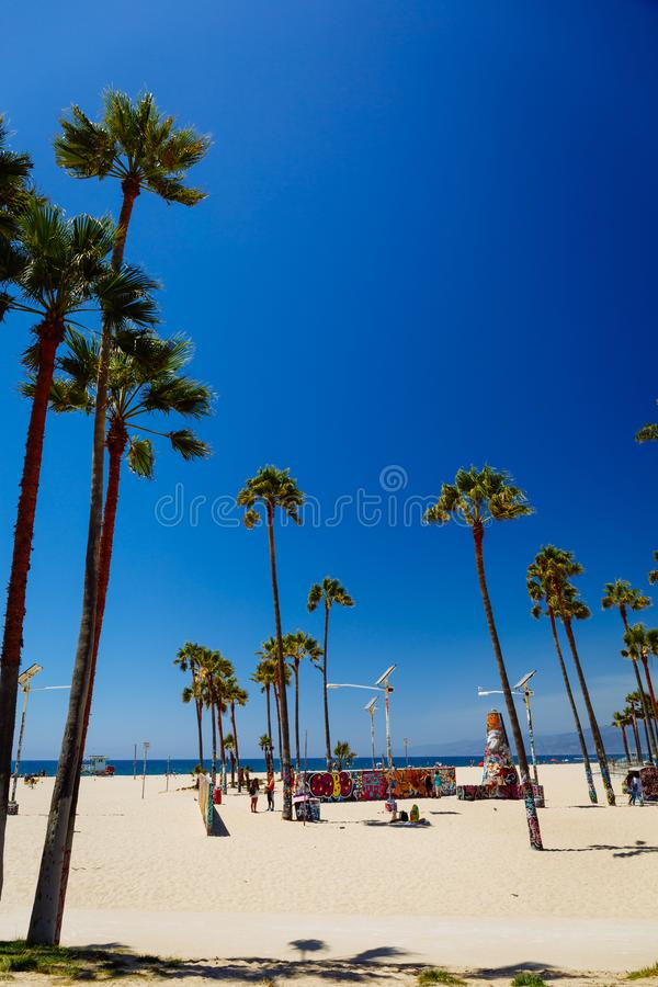Tripical beach with palm trees. Holiday and vacation concept. California landscape royalty free stock photo