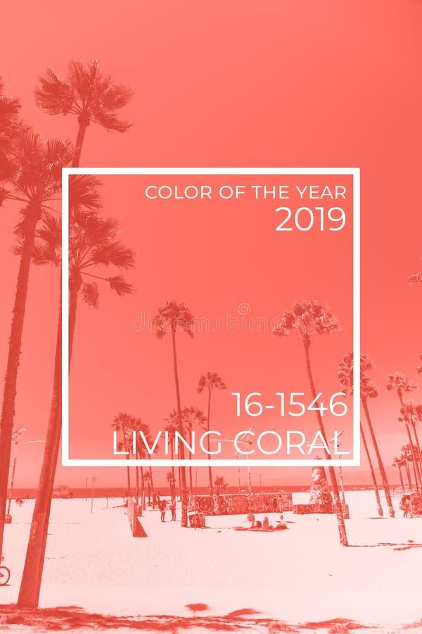 Tripicalstrand met palmen Vakantie en Vakantieconcept Het leven koraal het stemmen - kleur van het jaar 2019 stock fotografie