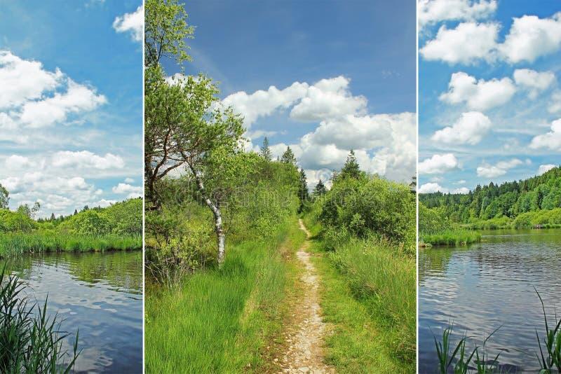 Triplicar-se - terra do pântano imagem de stock