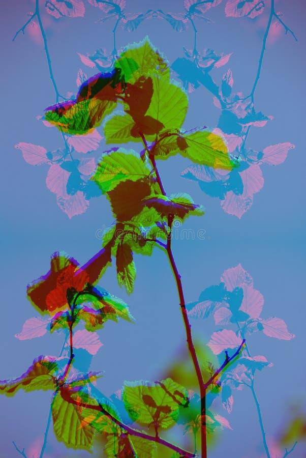 Trippy Glitch数字抽象艺术迷幻艺术品色彩空间 免版税库存图片