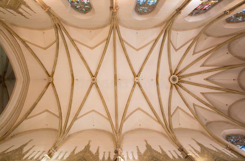 Trnava - het plafond in pastorie van gotische Sinterklaas-kerk stock afbeeldingen