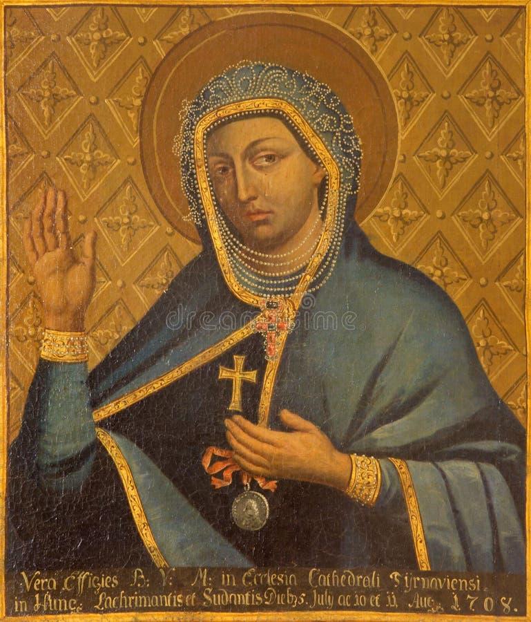 Trnava - Jungfrau Maria als die Gönnerin in der peste Epidemie und dem Krieg von Jahr 1708 durch unbekannten Maler von in Sankt-  stockfoto