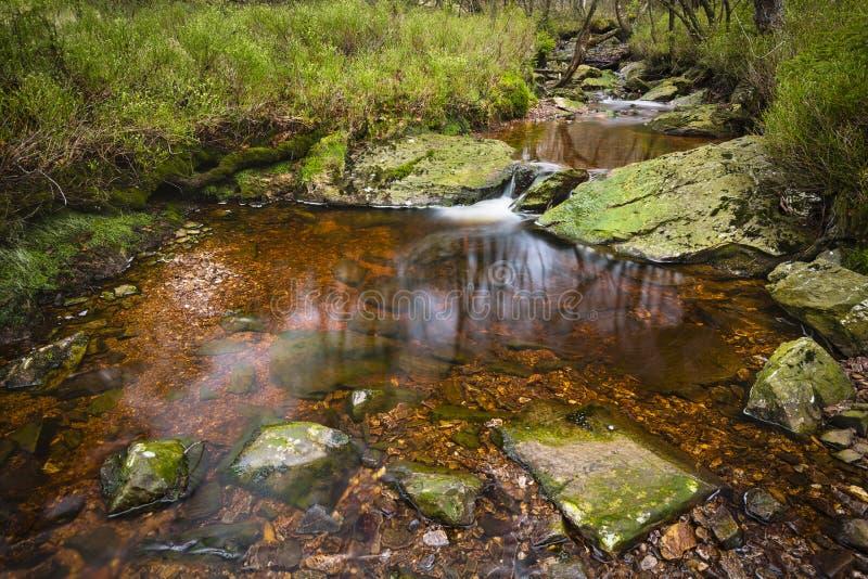 Download Tro Maret Rzeka, Ardennes, Belgia Obraz Stock - Obraz złożonej z kamienie, spokojny: 106906923