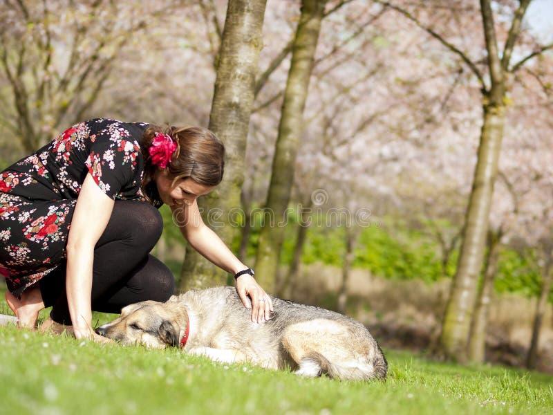 Trocas de carícias bonitas da menina seu cão durante uma caminhada na primavera fotos de stock
