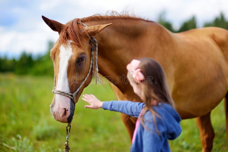 Trocas de carícias bonitos da menina um cavalo no campo imagem de stock