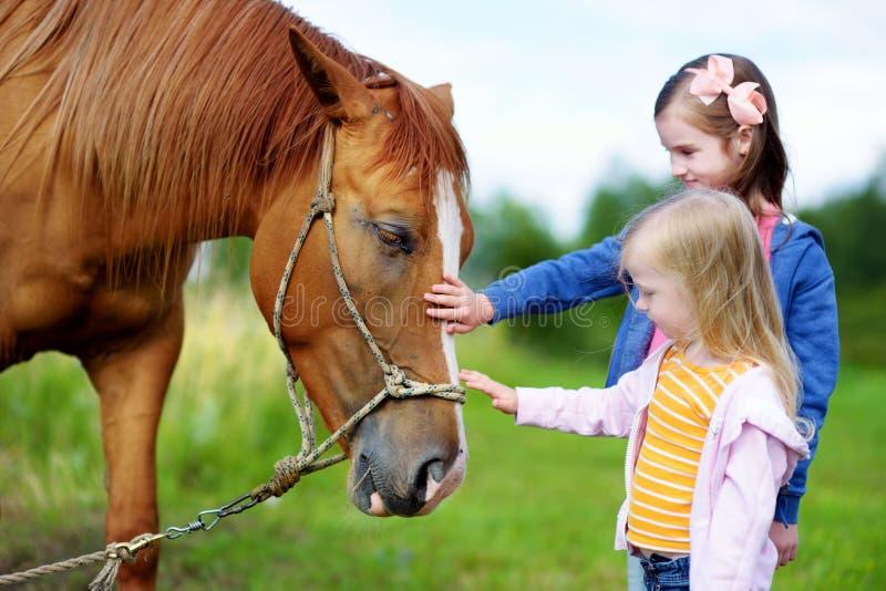 Trocas de carícias bonitos de duas irmãs mais nova um cavalo no campo foto de stock royalty free
