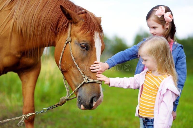 Trocas de carícias bonitos de duas irmãs mais nova um cavalo no campo fotos de stock