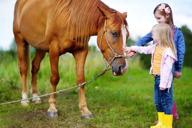 Trocas de carícias bonitos de duas irmãs mais nova um cavalo no campo imagens de stock