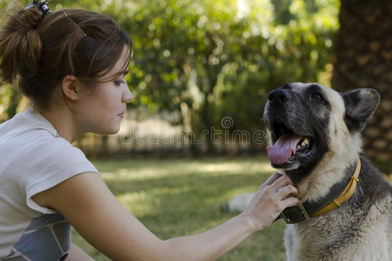 Trocas de carícias da jovem mulher seu cão imagens de stock royalty free